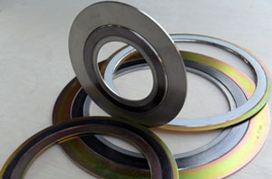 Semi Metallic Gasket