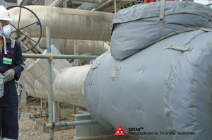 Removable Insulation Thermal Jacketing